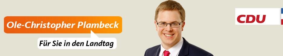 Ole Plambeck, Kandidat zur Landtagswahl